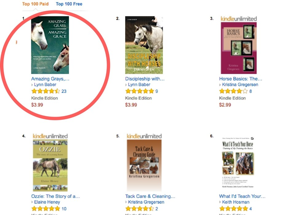 How to Get on Top of Amazon Sales Rankings in Your Category